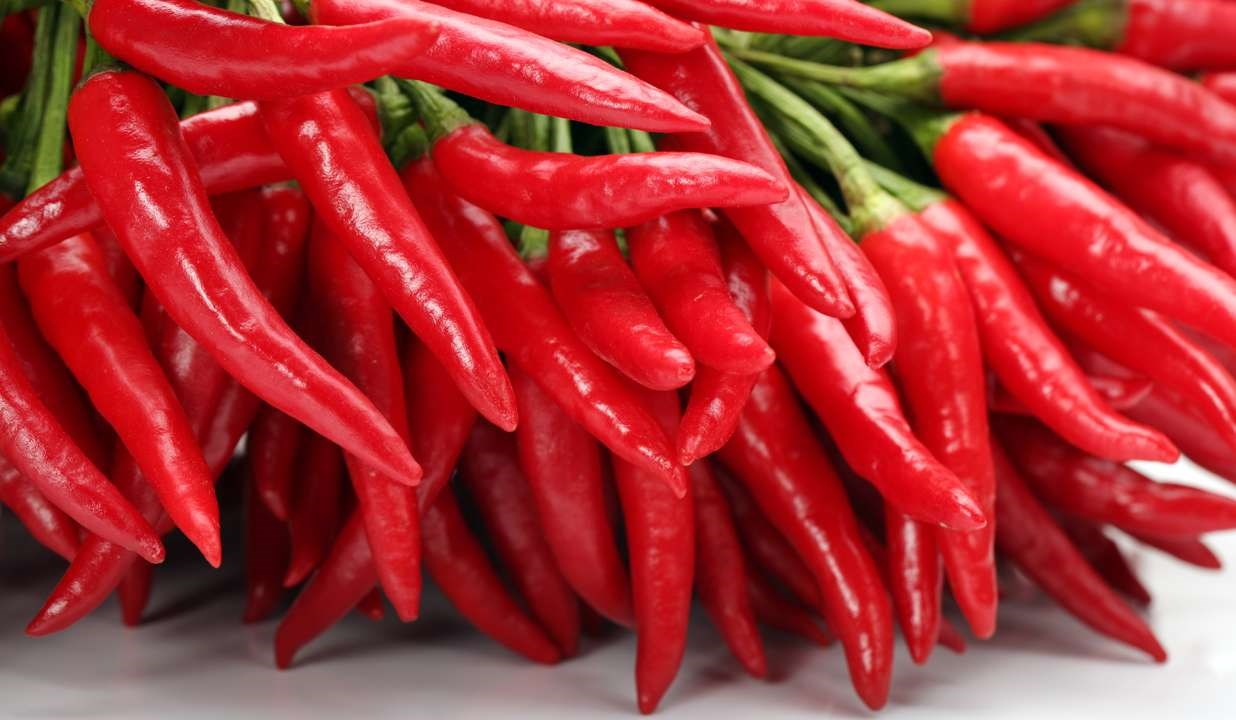 Pepper and Halt: Spicy Chemical May Inhibit Gut Tumors