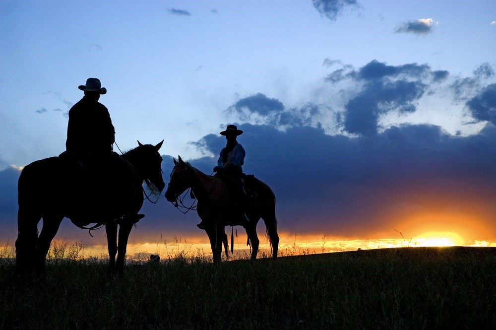 Increased Mortality Causes in Rural America