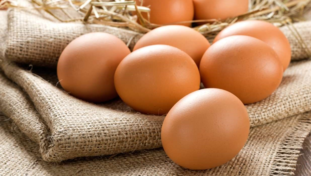 Replacing Meat With Egg White May Help Control Hyperphosphatemia
