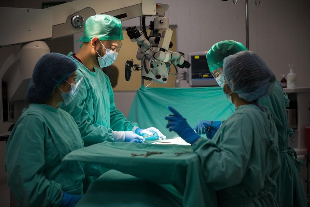 Organ Donation From Elderly Still Beneficial for Transplantation