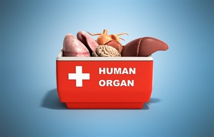 Information Deficits, Moral Stances Contribute to Lack Interest in Organ Donation