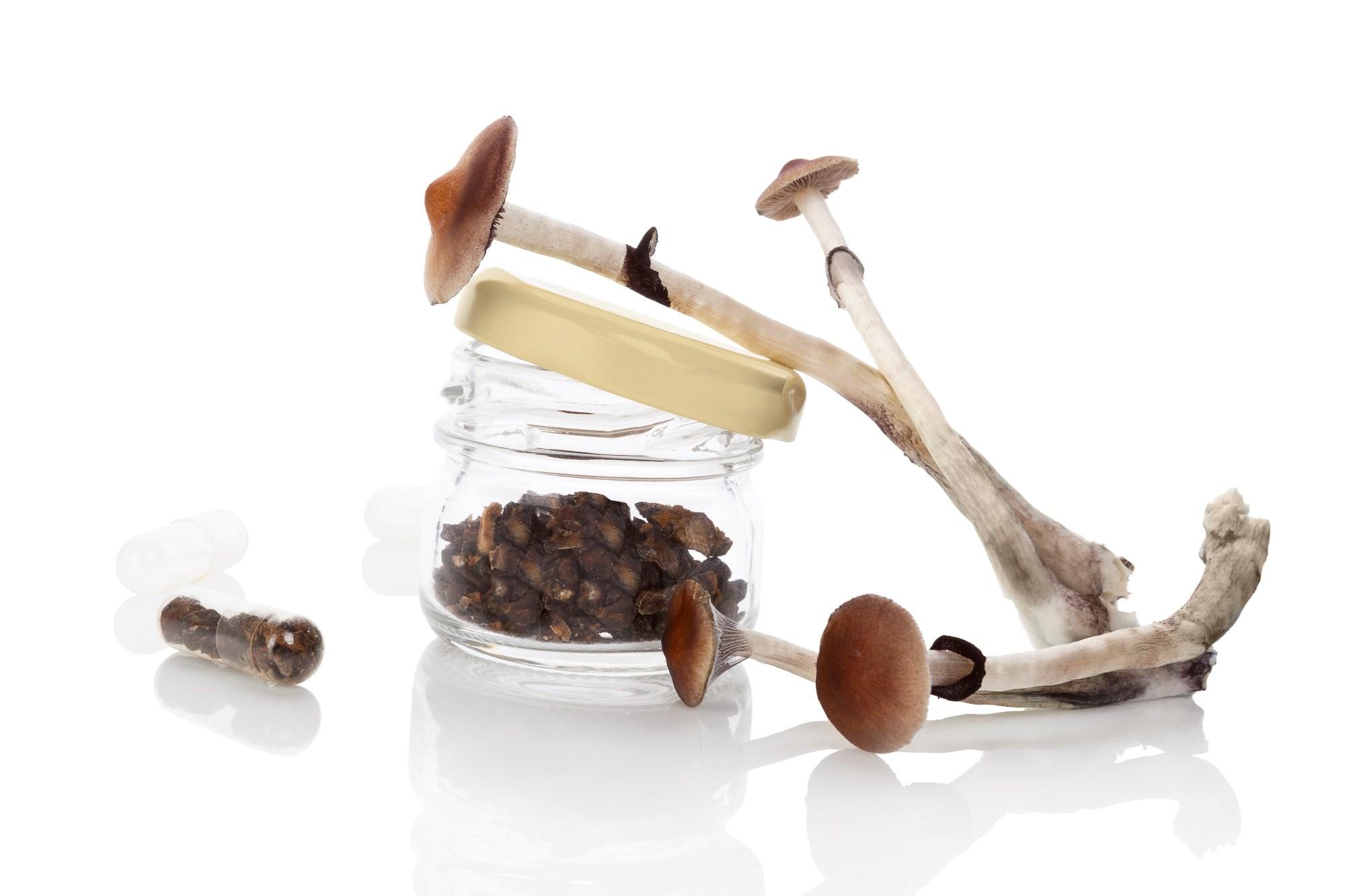 Psilocybin, a serotonin receptor agonist, is a component of some mushroom species.